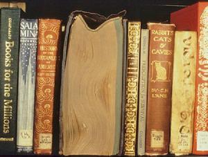 Libros en estanterias